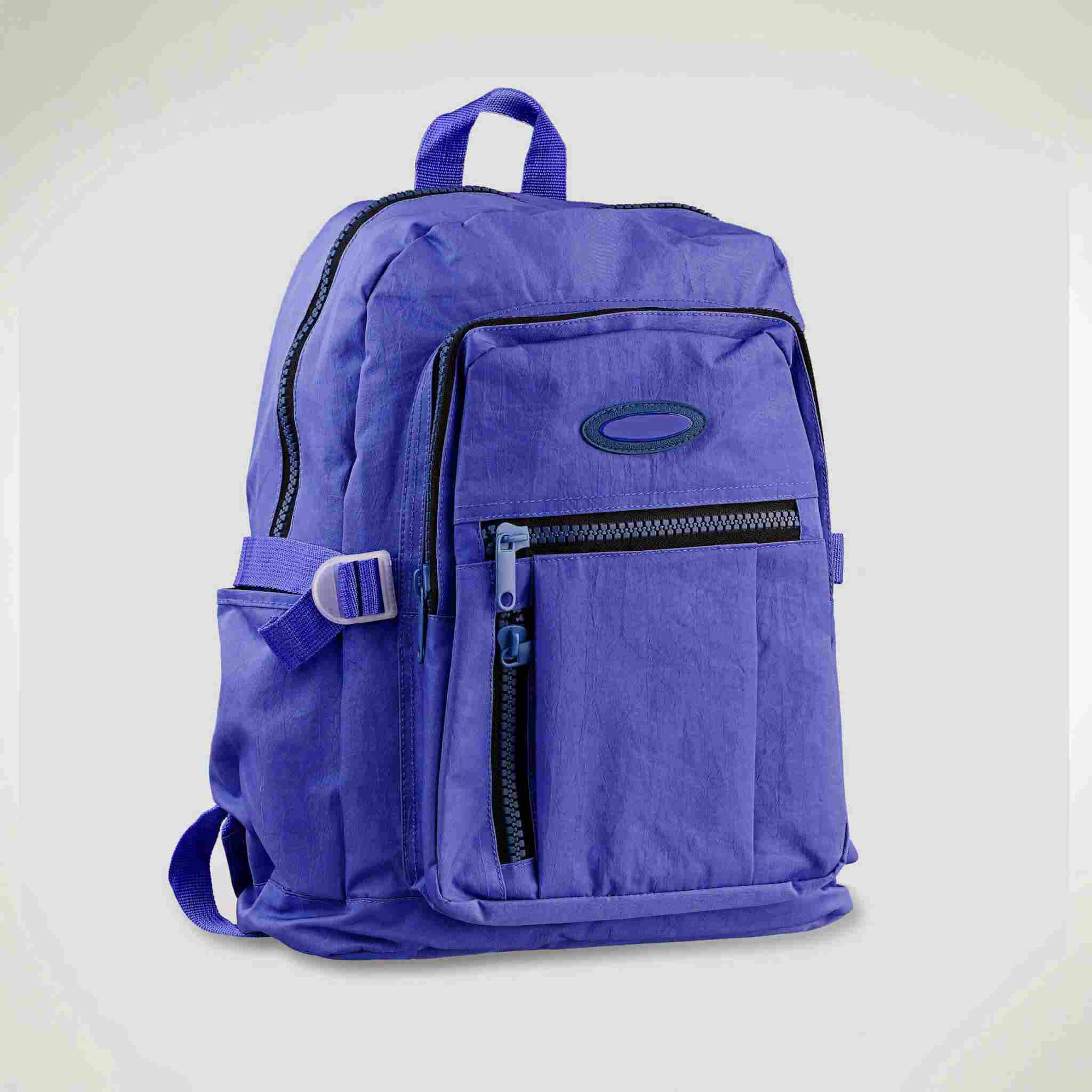 a662f5cd3b58 Blue And Purple Backpack- Fenix Toulouse Handball